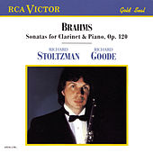 Brahms: Sonata For Clarinet & Piano, Op. 120 by Richard Stoltzman