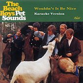 Wouldn't It Be Nice (Karaoke Version) by The Beach Boys