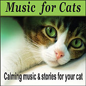 Music For Cats:  Cat Music, Music For Kittens - Pet Music by Robbins Island Music Group