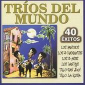 Tríos Del Mundo : 40 Éxitos by Various Artists