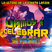 Vamos A Celebrar - Lo Ultimo De La Fiesta Latina by David & The High Spirit