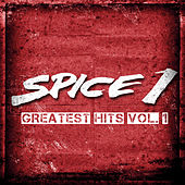 Greatest Hits vol. 1 by Spice 1