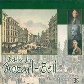 Mozart Era (Meister Der Mozart-Zeit) - Kraus, J.M. / Naumann, J.G. / Salieri, A. / Rosetti, A. / Dittersdorf, C.D. Von / Gluck, C.W. by Various Artists