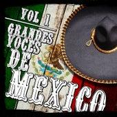 Grandes Voces De México. Vol.1 by Various Artists