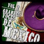 Grandes Voces De México. Vol.2 by Various Artists