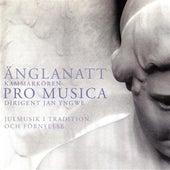 Anglanatt by Various Artists
