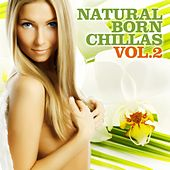 Natural Born Chillas, Vol. 2 (The Ultimate Lounge & Chill Out Experience) by Various Artists