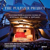 The Pulitzer Project by Carlos Kalmar