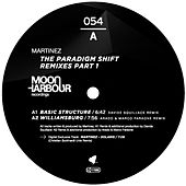 The Paradigm Shift Remixes Part 1 by Martinez