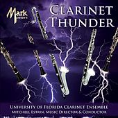 Clarinet Thunder by Various Artists