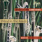 Wind in the Reeds by Mitchell Estrin
