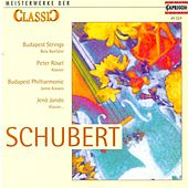 Classic Masterworks - Franz Schubert by Various Artists