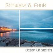 Ocean of Secrets by Schwarz and Funk