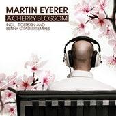 Cherry Blossom by Martin Eyerer