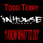 I Know What To Do by Todd Terry
