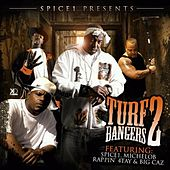 Spice1 Presents Turf Bangers #2 by Various Artists