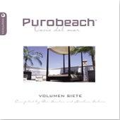 Purobeach Volumen 7 by Various Artists