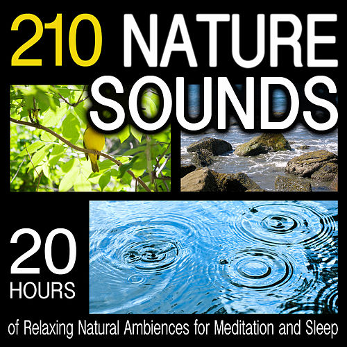 210 Nature Sounds - 20 Hours Of Relaxing Natural Ambiences for Meditation And Sleep by Dr. Sound Effects