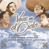 Voces En El Cielo by Various Artists