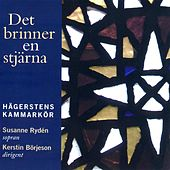 Det brinner en stjarna by Various Artists