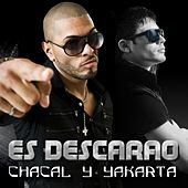 Es Descarao by Chacal y Yakarta