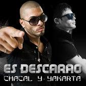 Es Descarao by Chacal y Yakarta