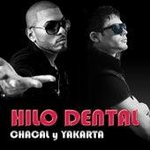 Hilo Dental by Chacal y Yakarta
