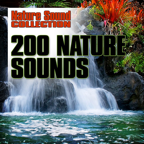 200 Nature Sounds by Nature Sound Collection