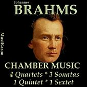 Brahms, Vol. 12 : Chamber Music by Various Artists