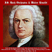 Vivaldi, J.S. Bach, Pachelbel, Albinoni, Schubert, Walter Rinaldi: Paris Concerto, Air on the G String, Violin Concerto No. 1 in A Minor, Canon in D Major, Ave Maria, Adagio for Strings and Organ in G Minor, Orchestral, Piano and Organ Works - Vol. II by Johann Sebastian Bach