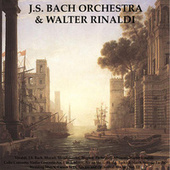 Vivaldi, J.S. Bach, Mozart, Mendelssohn, Wagner, Pachelbel, Albinoni, Walter Rinaldi: Cello Concerto, Violin Concerto No. 1 in A Minor, Air On The G String, Turkish March, Sonata Facile, Wedding March, Canon in D, Adagio and Orchestral Works - Vol. III by Johann Sebastian Bach
