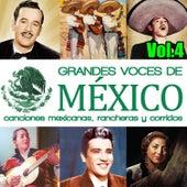 Grandes Voces de México. Canciones Mexicanas, Rancheras y Corridos Vol.4 by Various Artists