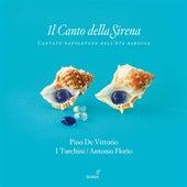 Il Canto della Sirena: Cantate Napoletane dell'Eta Barocca von Various Artists