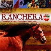 Antología Ranchera Grandes Voces, Grandes Canciones Volume 2 by Jorge Negrete