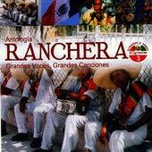 Antología Ranchera Grandes Voces, Grandes Canciones Volume 3 by Cuco Sanchez
