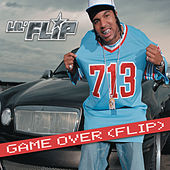 Game Over (flip) by Various Artists