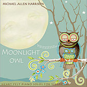 Moonlight Owl by Michael Allen Harrison