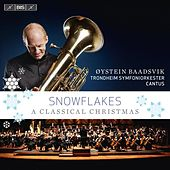Snowflakes - A Classical Christmas by Oystein Baadsvik