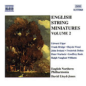 English String Miniatures, Vol. 2 by David Lloyd-Jones
