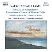 Vaughan Williams: Fantasias / Norfolk Rhapsody / In the Fen Country / Concerto Grosso by James Judd