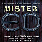 MISTER ED - Theme from the TV Series by Ray Evans and Jay Livingston by Dominik Hauser