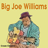Big Joe Williams by Joe Williams