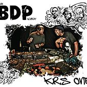 The Bdp Album by KRS-One