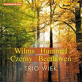Wilms - Hummel - Czerny - Beethoven: Works for Flute, Cello and Piano by Trio Wiek