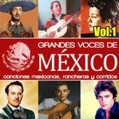 Grandes Voces de México. Canciones Mexicanas, Rancheras y Corridos. Vol.1 by Various Artists