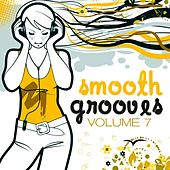 Smooth Grooves, Vol. 7 (Lounge & Downbeat Sunset Edition) by Various Artists