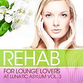 Rehab for Lounge Lovers At Lunatic Asylum, Vol.3 (100% of the Biggest Chill Out and Lounge Relaxations) by Various Artists