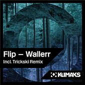 Wallerr by Lil' Flip