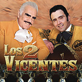 Los 2 Vicentes by Various Artists