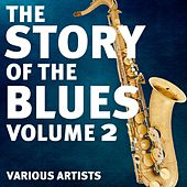 The Story Of The Blues Volume 2 von Various Artists